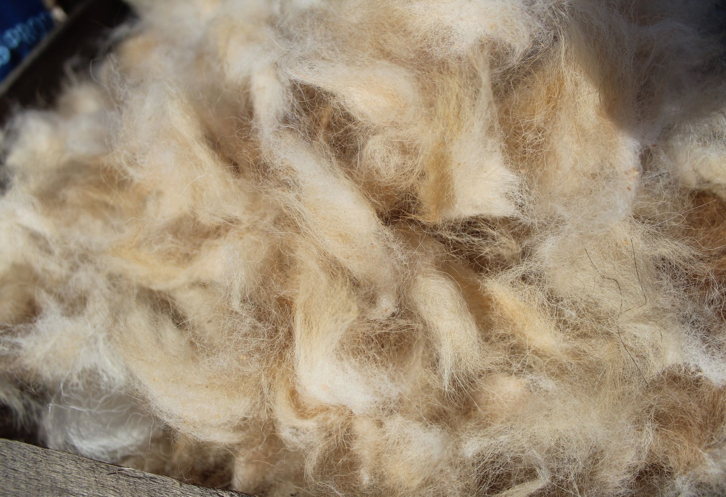 Собачья шерсть для изготовления валенок